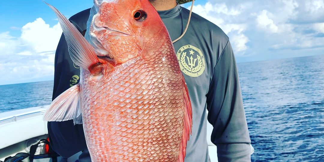 American Red Snapper fishing
